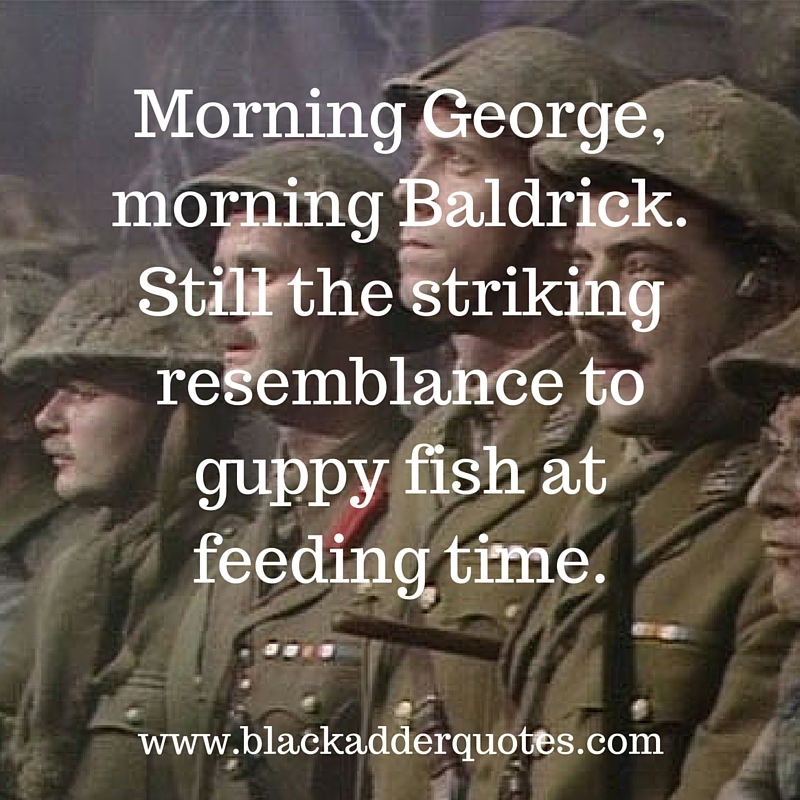 For more funny quotes from Blackadder, read the full article