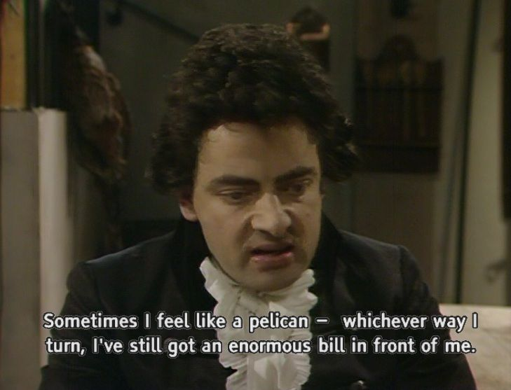 Blackadder pelican quote